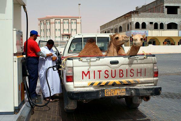 """Begegnung mit dem """"Kamel Mitsubishi"""" an der Oman Tankstelle"""