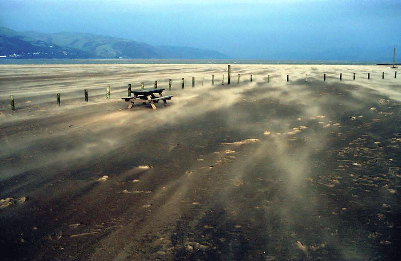 behind the Ynyslas sand dunes (Wales)