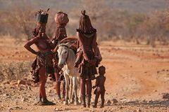 Bei den Himba III