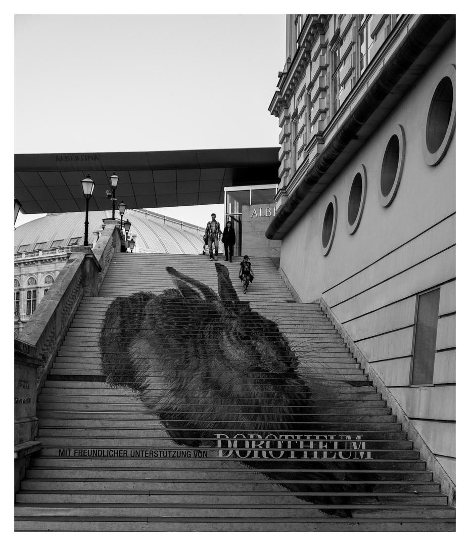 Bei der Albertina in Wien, weiss man, wie der Hase läuft!