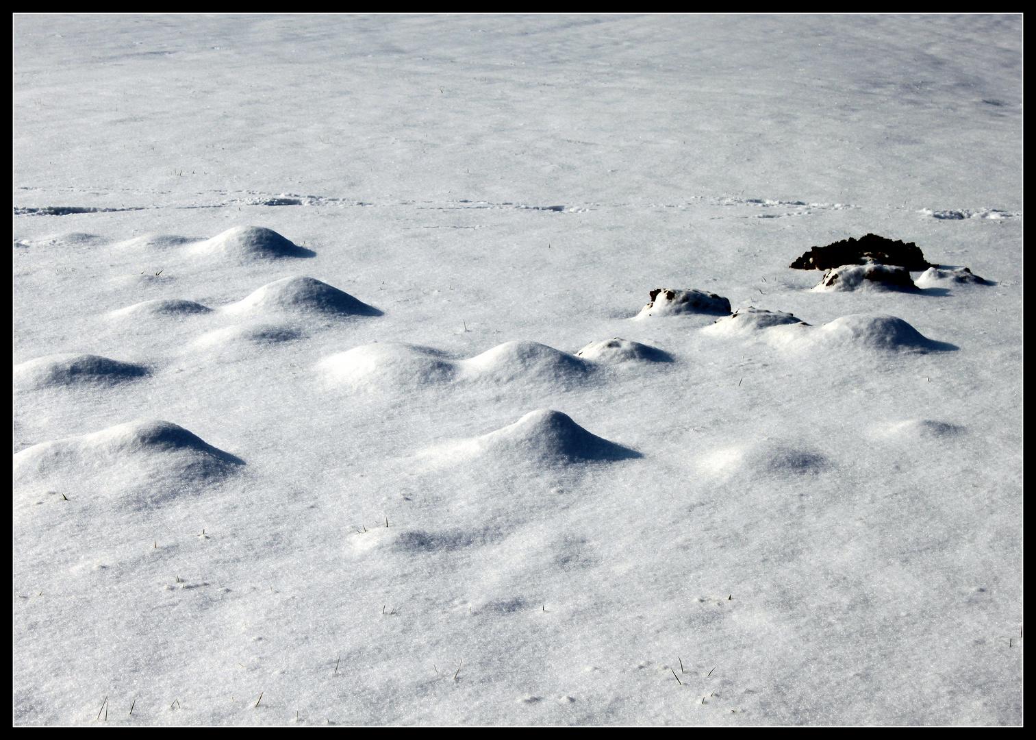 -Bei der Arbeit... und immer noch soviel Schnee-