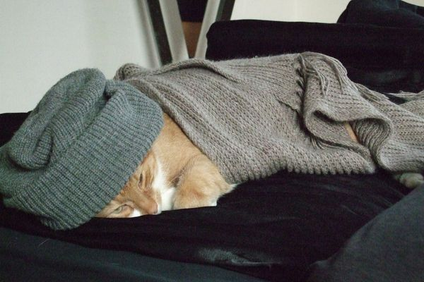 Bei Erkältung immer warm einpacken