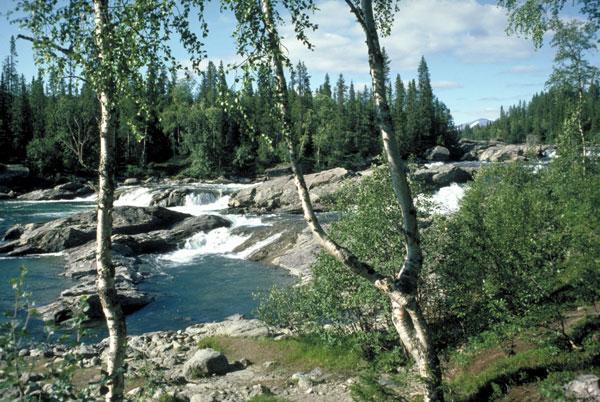 Bei Kvikkjokk in Lappland