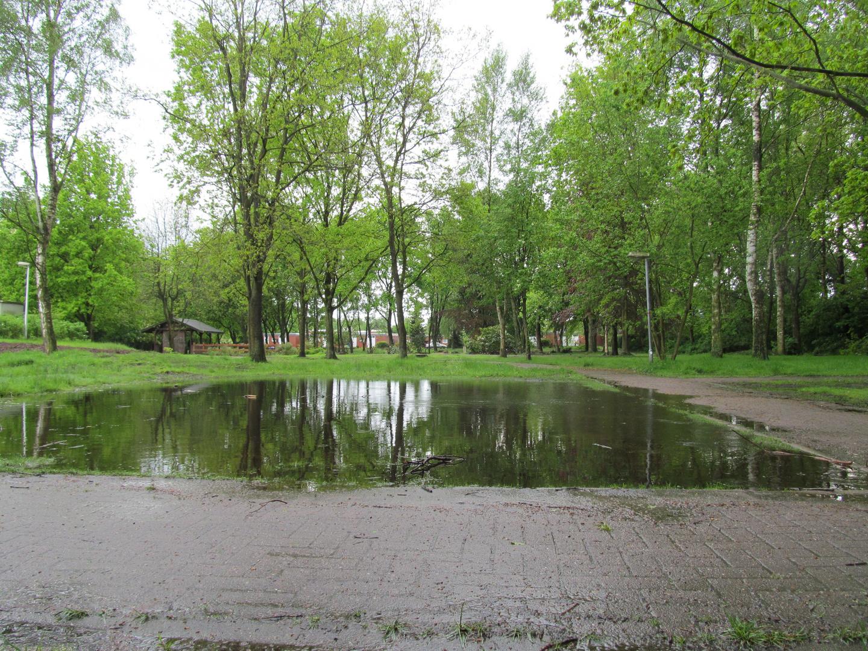 Bei Regen in unserem Stadtpark in Hemmoor