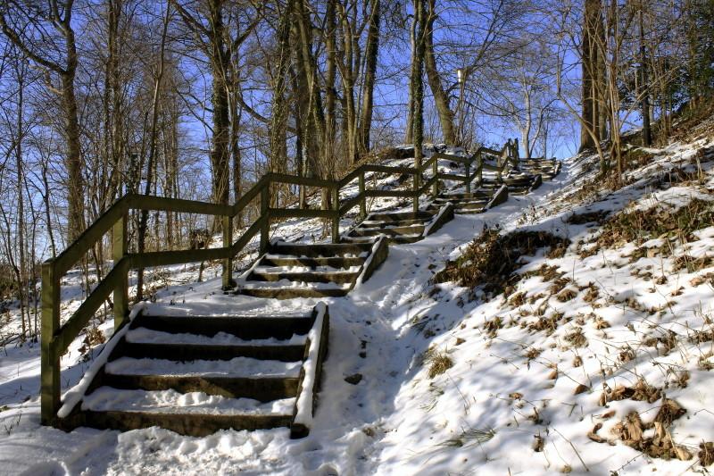 bei Schloss Homburg