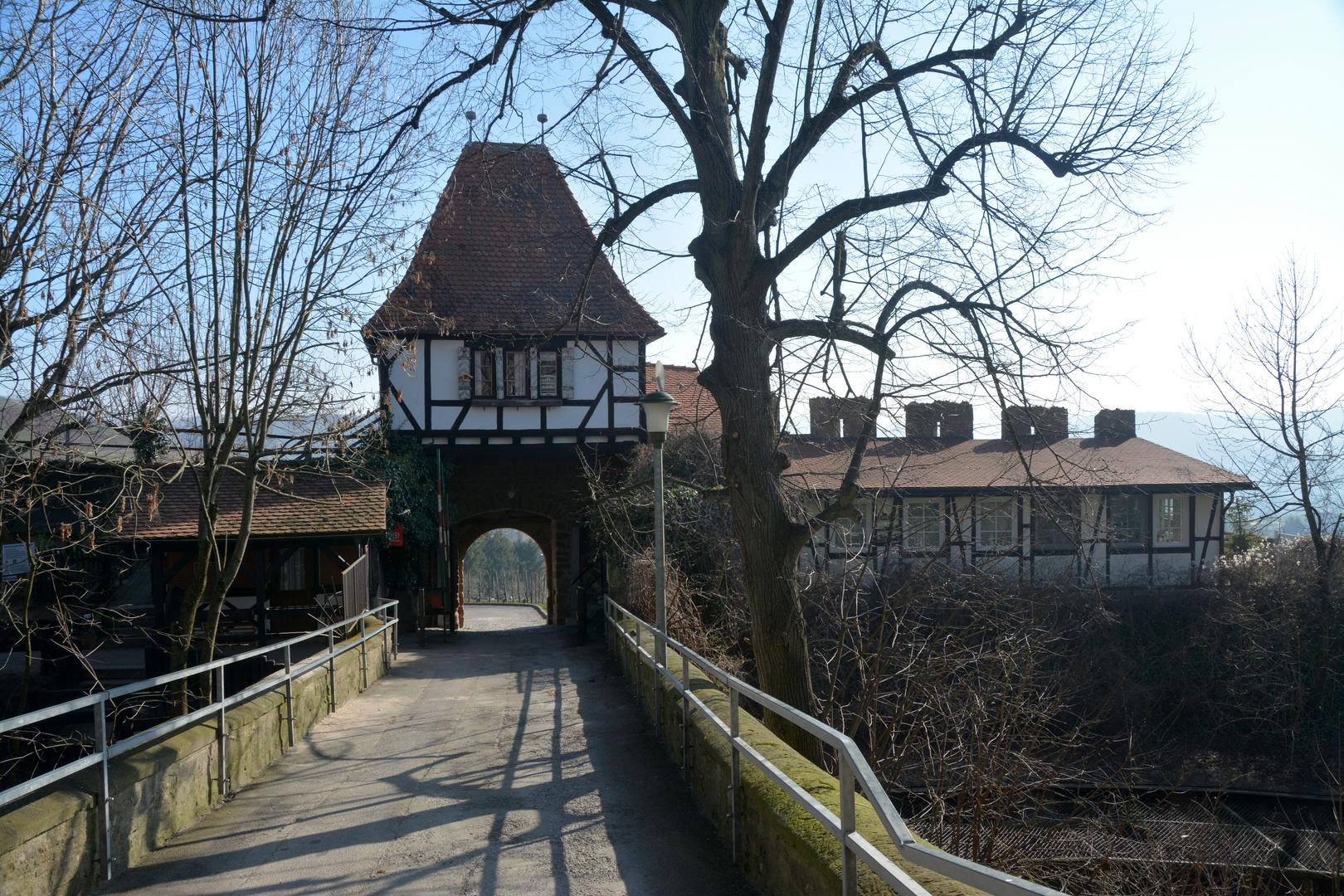 Beilstein/Burg Hohenbeilstein- 2