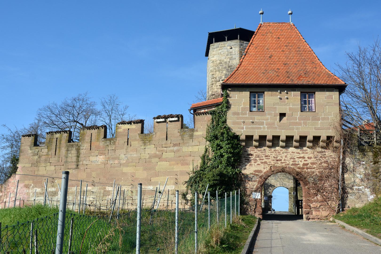 Beilstein/Burg Hohenbeilstein- Eingang