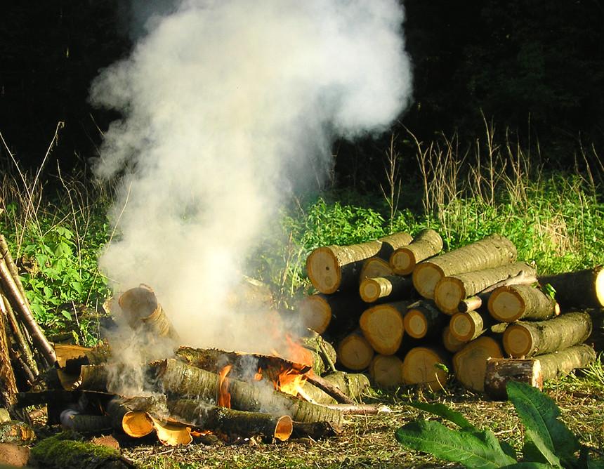 Beim Holzmachen