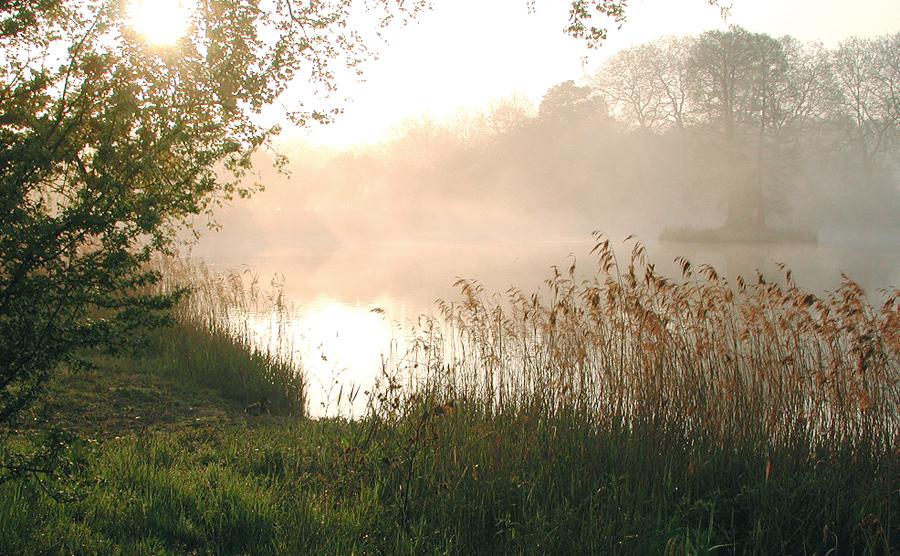 Beim Morgenspaziergang im Schloßpark...