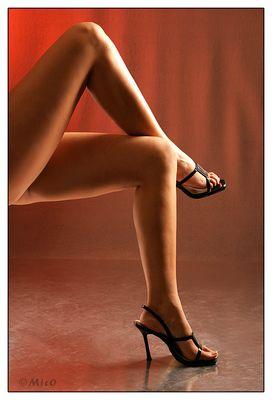 Beine ..........