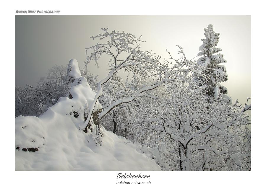 Belchenhorn