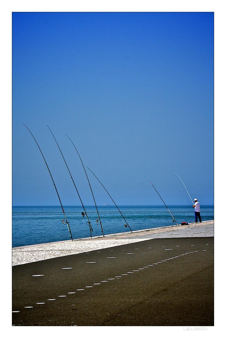 Belém. Fishing.