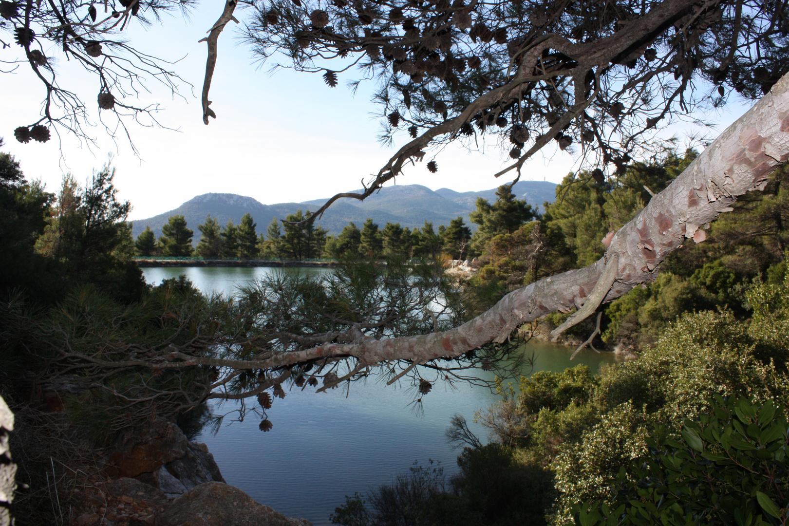 Beletsi Lake (Athens - Greece)