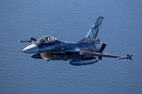 Belgian Air Force - F-16 - Tigermeet Painting