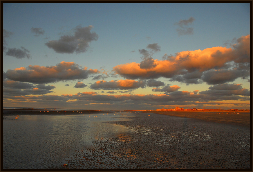Belgien Nordsee ! Danach wieder Island :-)