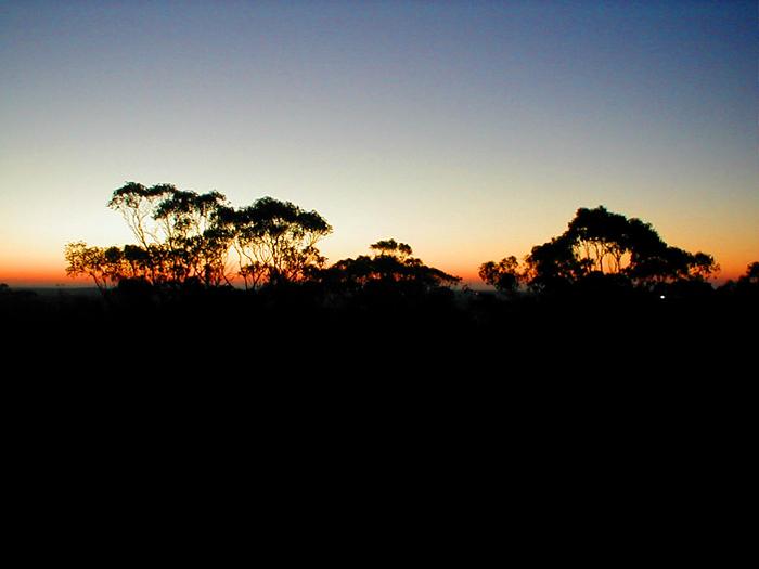 Bendigo sunset