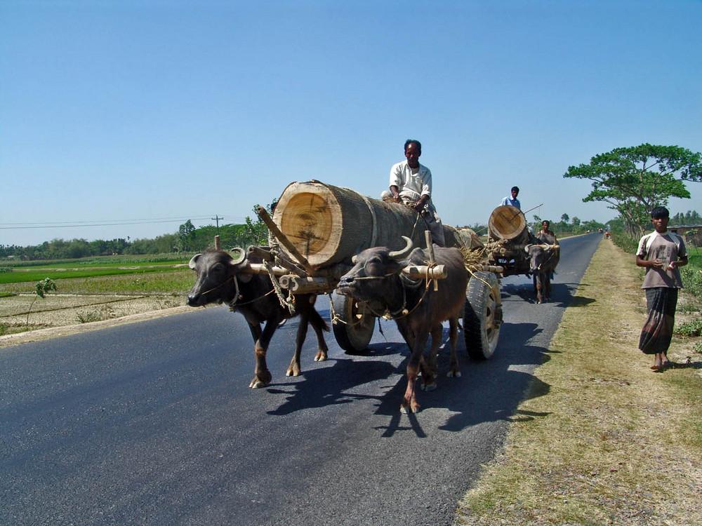 Bengalischer Schwerlastverkehr auf der Autobahn