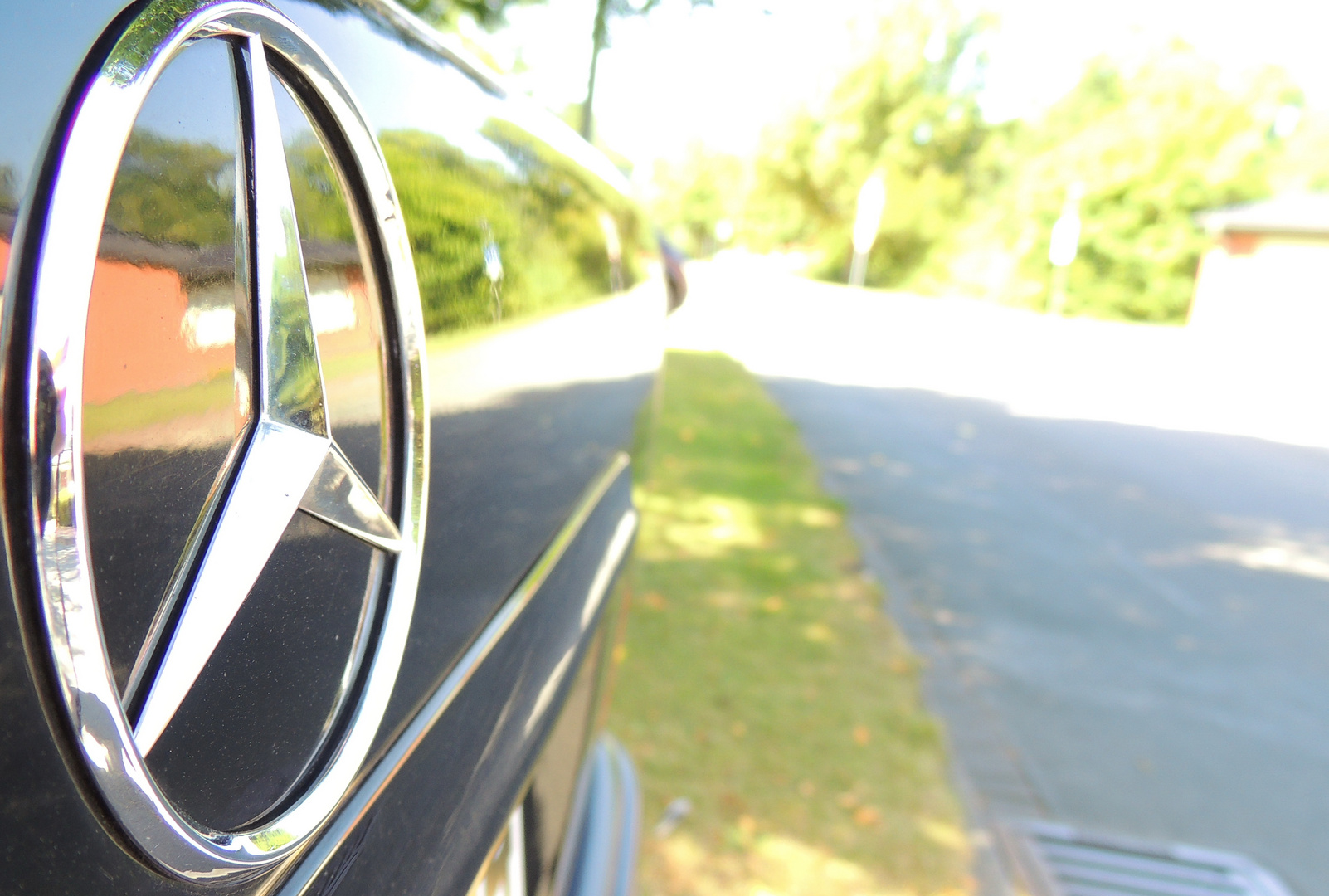 Benz Backside