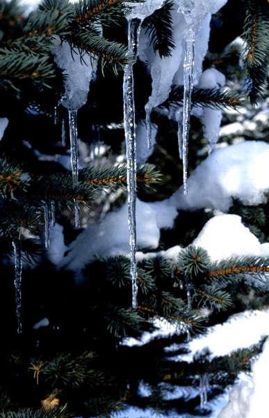 Beobachtungen im Winter