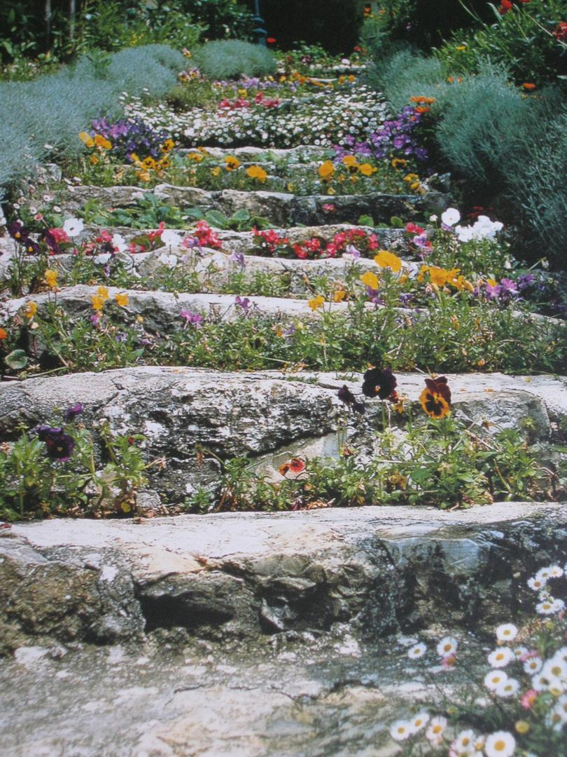 bepfanzte Treppe