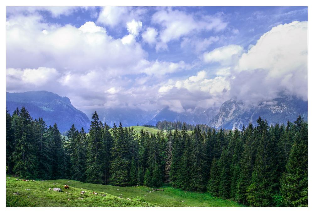 Berchtesgadener Land, auf dem Weg zur Königsbachalm