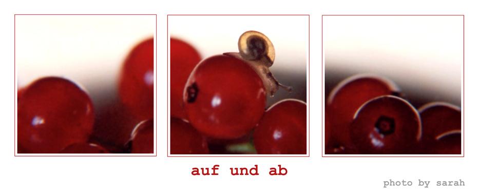 BERG - AUF - BERG - AB