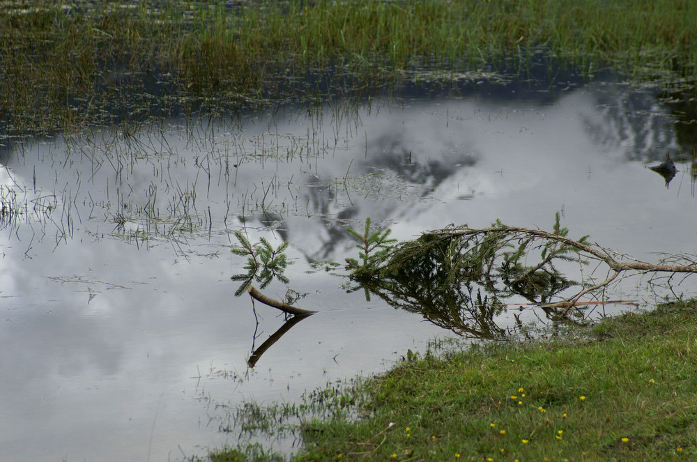 Berg im Teich II