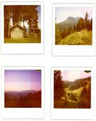 Berg Polaroids