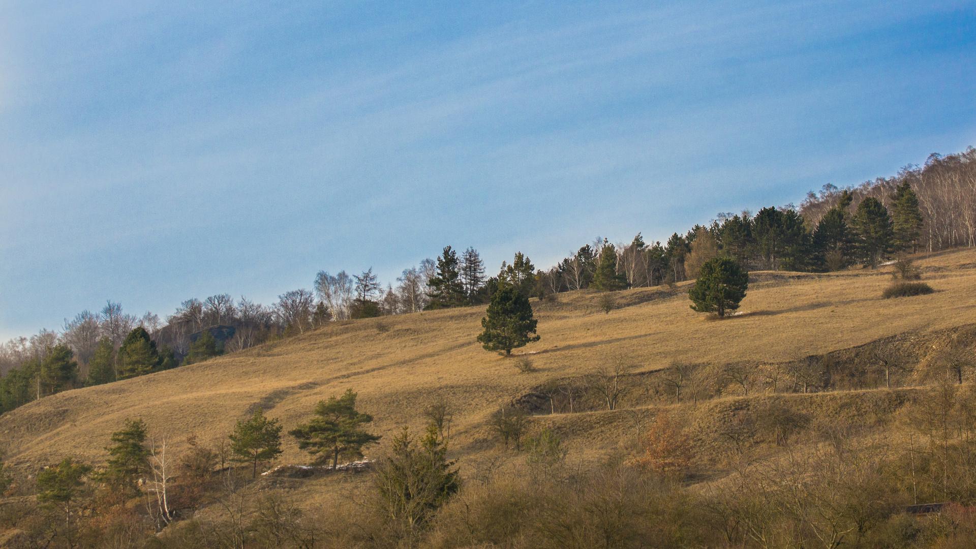 Berg über der Barbarossahöhle