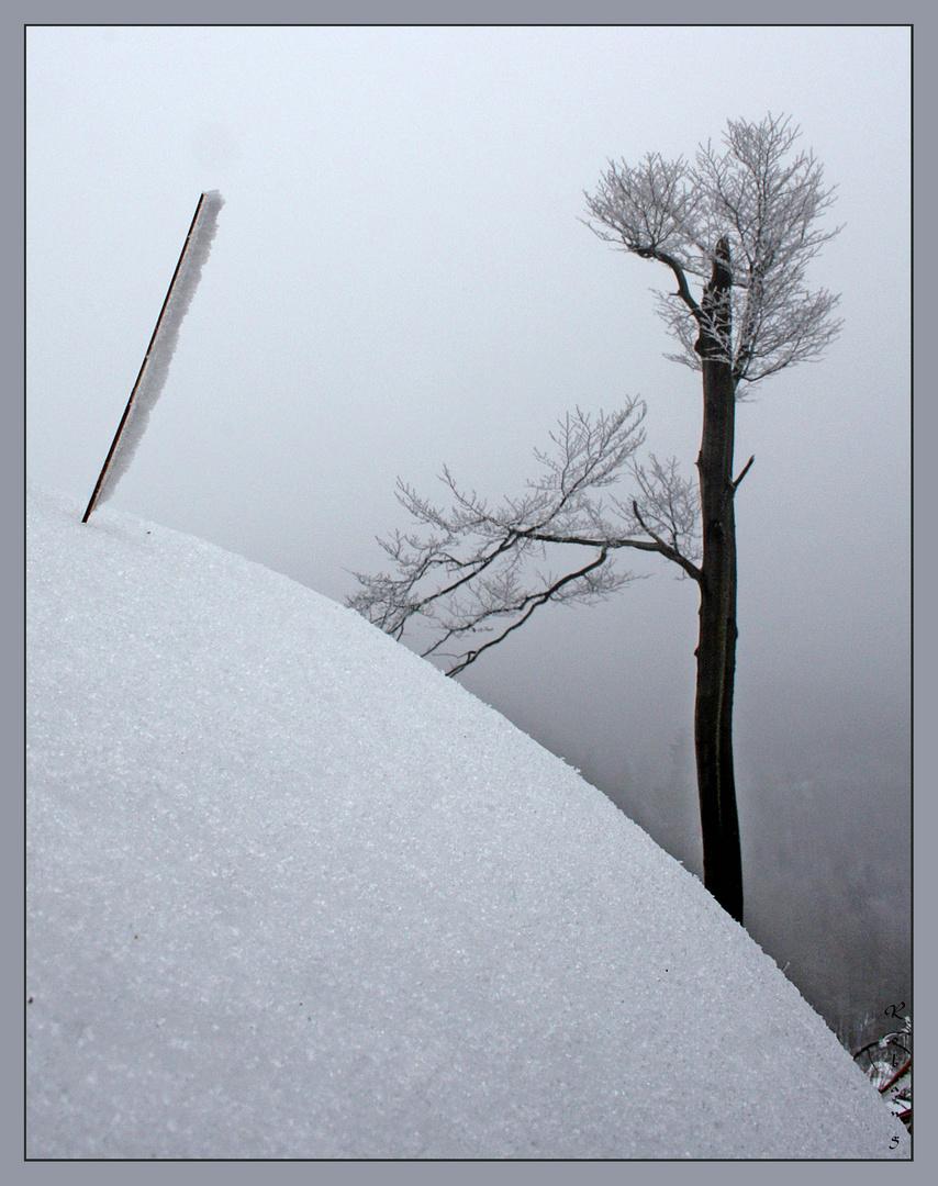 Bergbesteigung