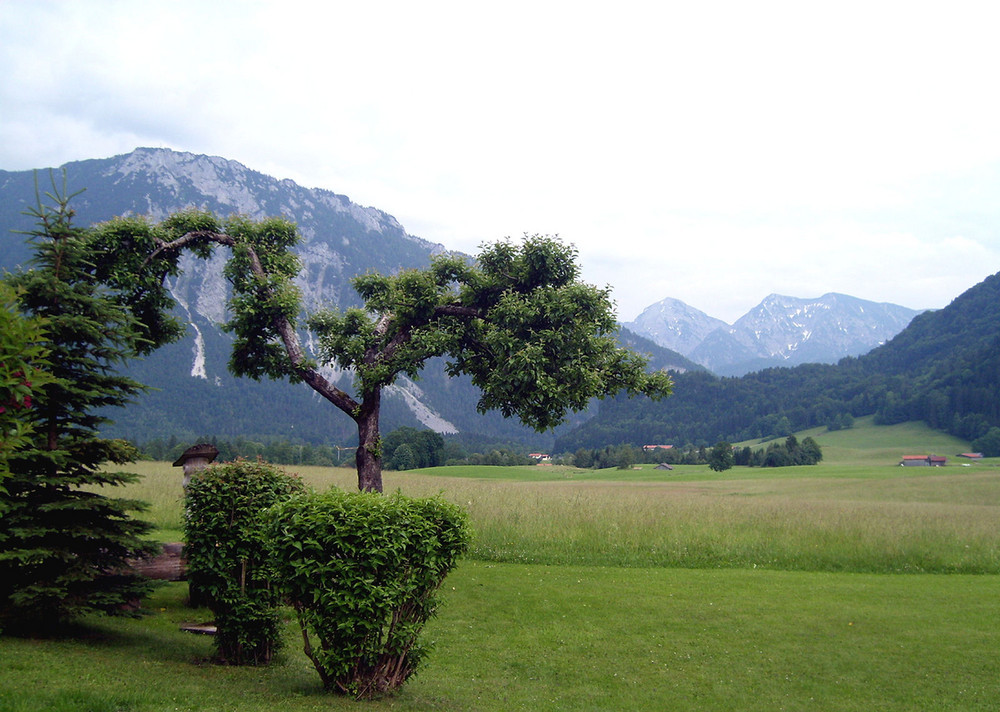 Berge in Ruhpolding