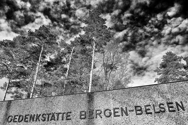 Bergen Belsen / 2014 - 1