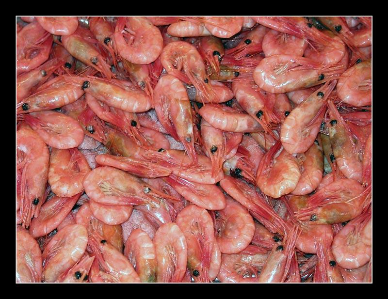 Bergen - Fischmarkt 1