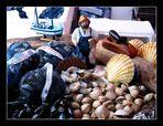 Bergen - Fischmarkt 7