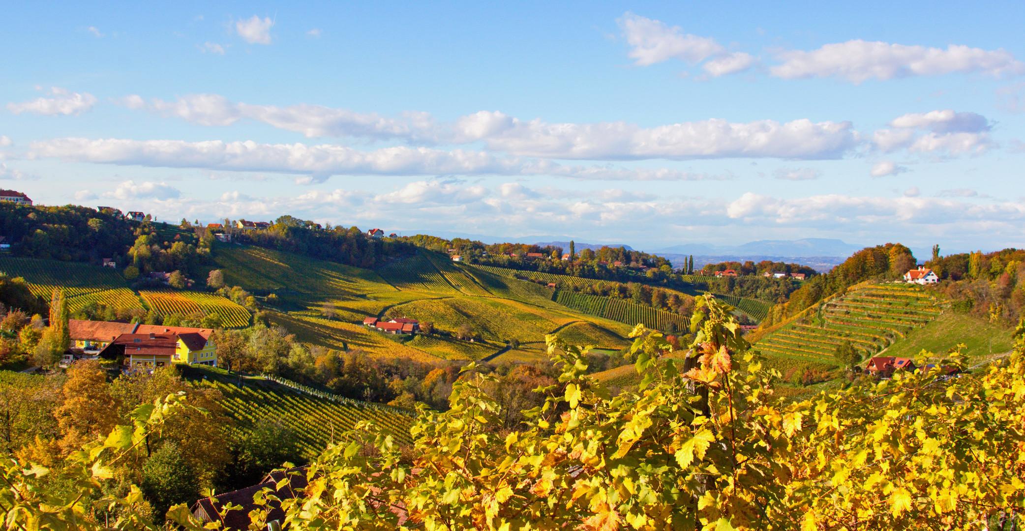 Berghausenregion im Herbst