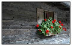 Berghüttenfenster