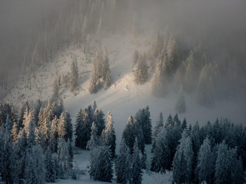 Bergkuppel im Nebel