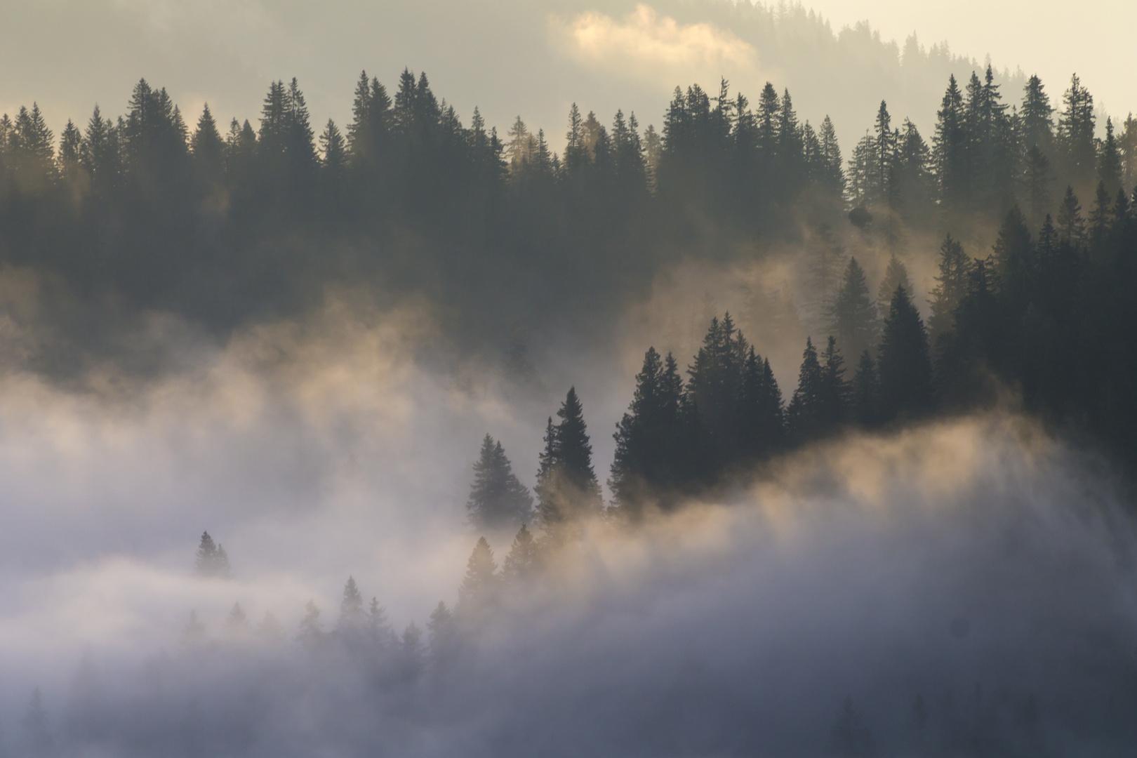 Berglandschaft #4