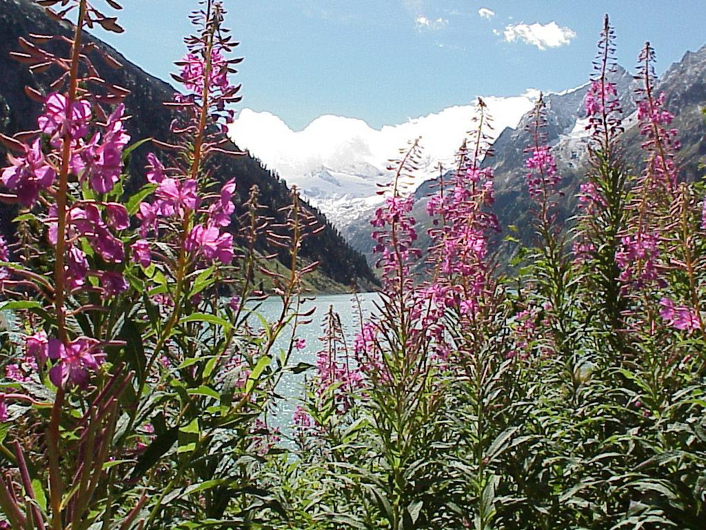 Bergsee 001