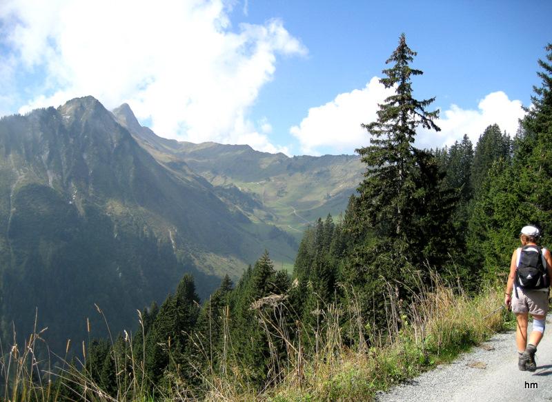 Bergwanderung zum Zaferhorn (Großwalsertal - Österreich)