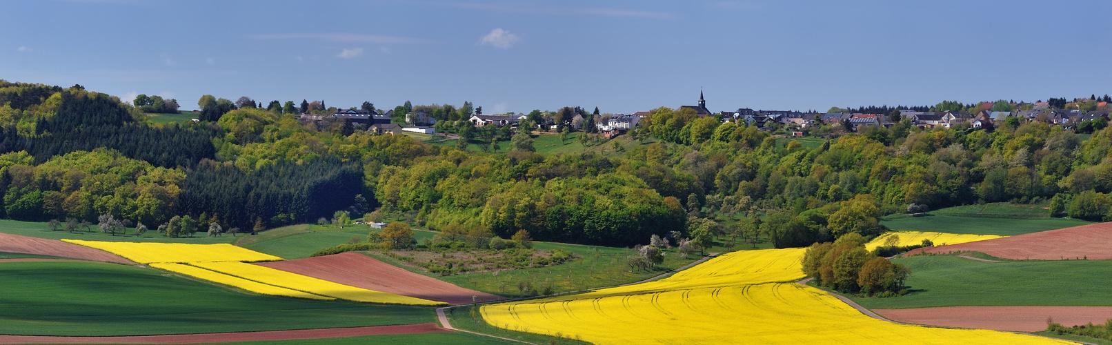 *Bergweiler-Panorama*