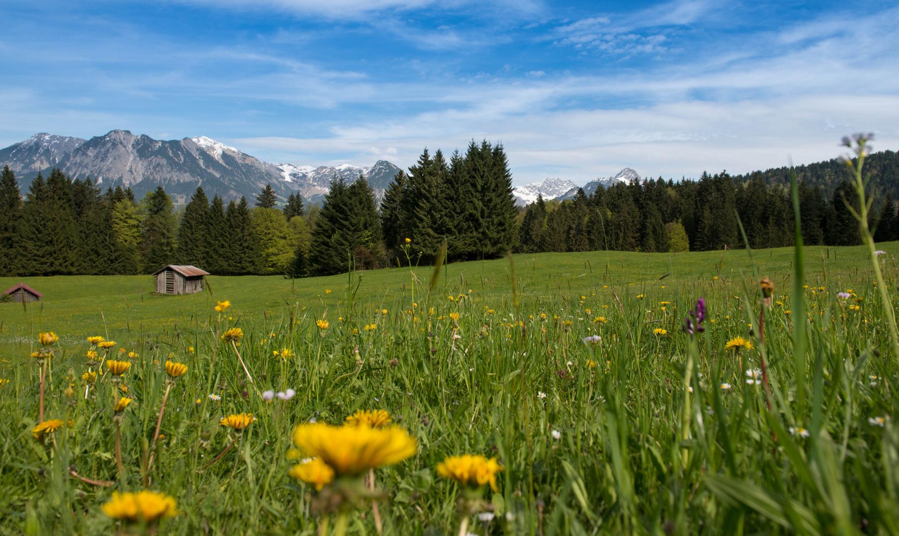 Bergwelt Oberbayern