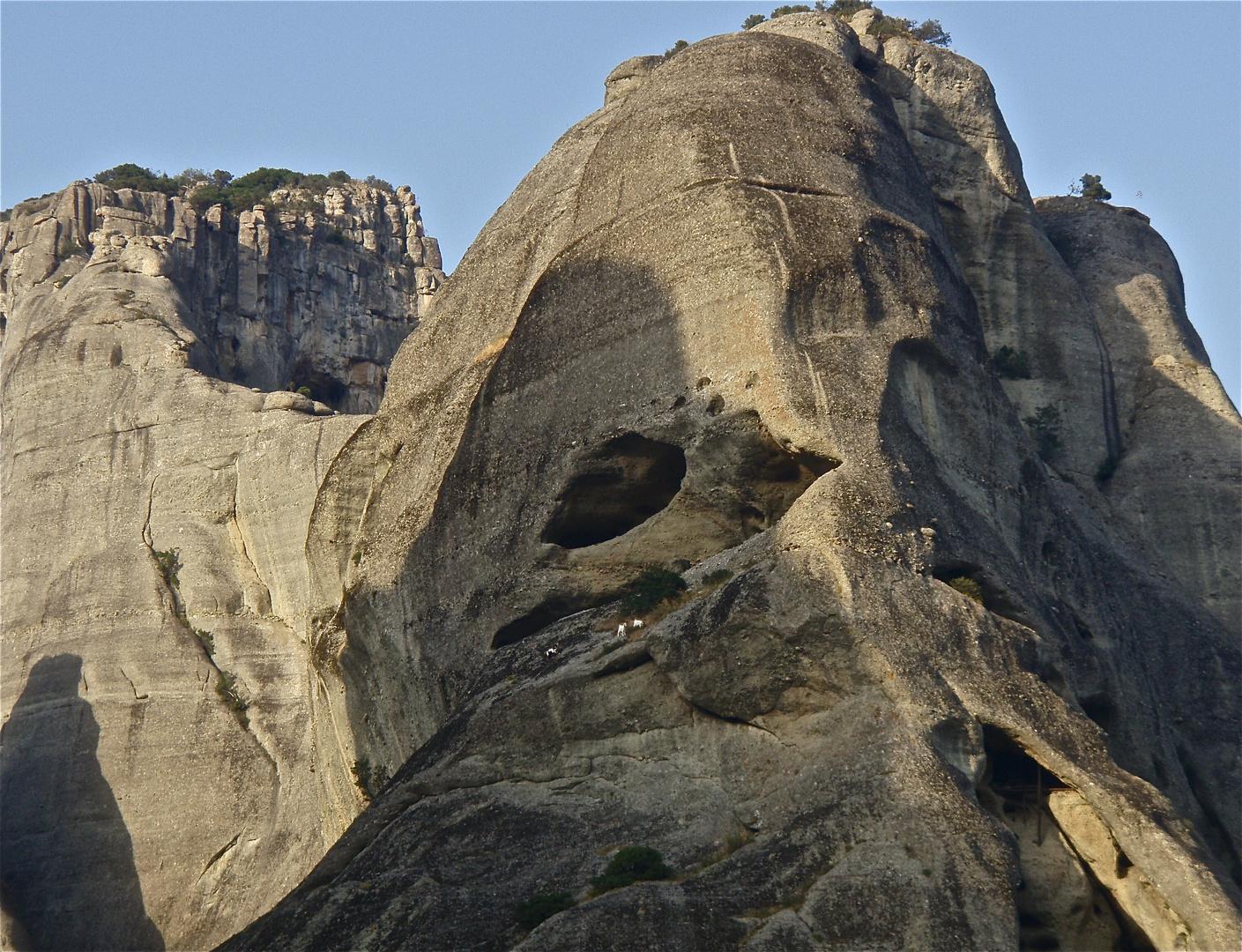 bergziegen, meteora, greece 2008