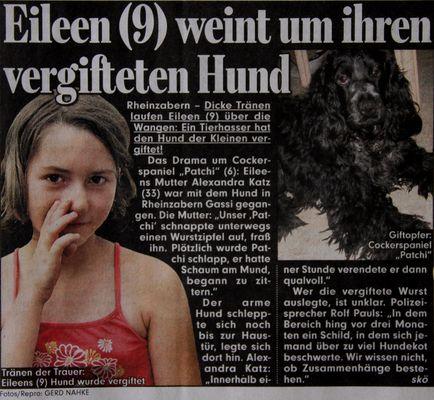 Bericht vom 6.7.2009 - Nur zur Info!