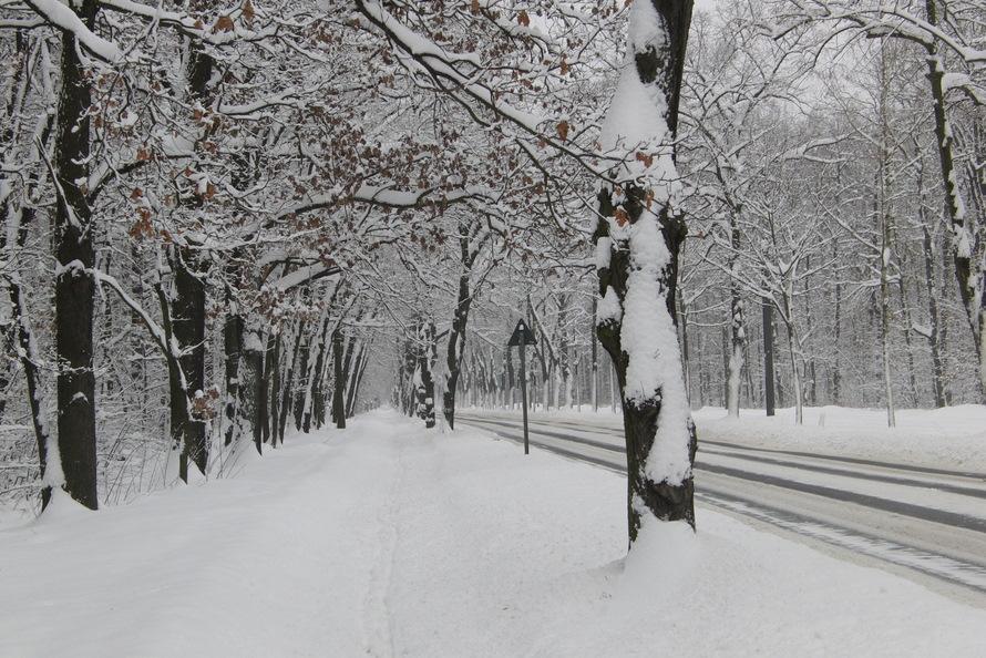 berlin 2010-7