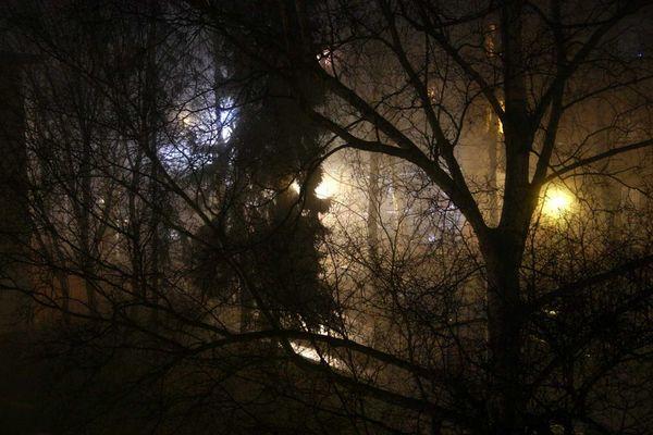 Berlin im Nachtnebel