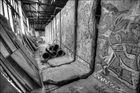Berlin Walls #6