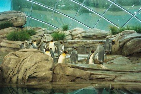 Berlin: Zoologischer Garten