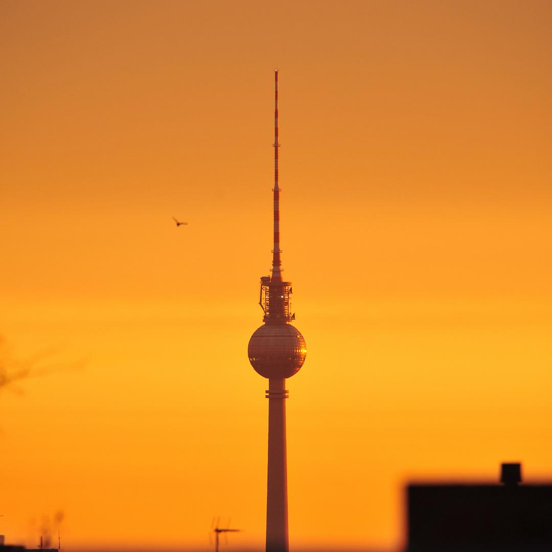 Berliner Fernsehturm im Sonnenaufgang