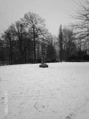 Berliner Park im Winter